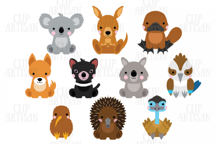 Australian Animals Clipart Kiwi Animals 382461 Illustrations Design Bundles Kiwi Animal Australian Animals Animal Clipart