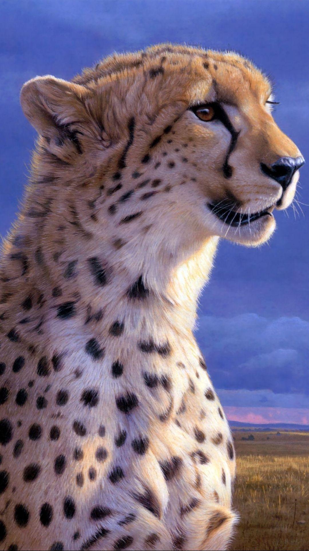 cute cheetah background cheetah background pinterest cheetah | hd