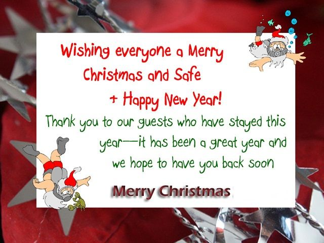 funny christmas messages for cards christmas pinterest funny