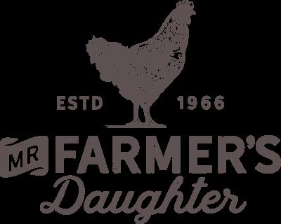 Gluten-free, Honey Graham Crackers - Mr. Farmer's Daughter