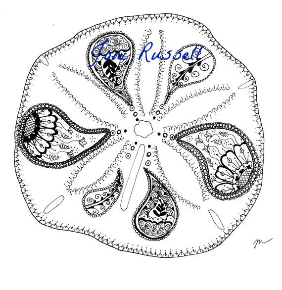 Zentangle Coloring Page Sand Dollar Coloring Pages Zentangle