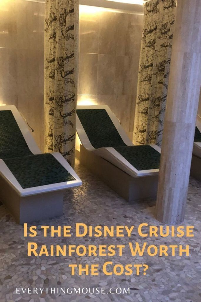 Disney Cruise Rainforest Room In 2020 Disney Cruise Tips