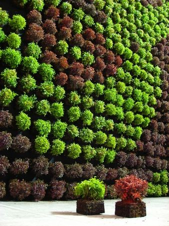 though our name is not seen our vertical garden trays are in many of these photoes great gardens ideas the grovert from bright green usa