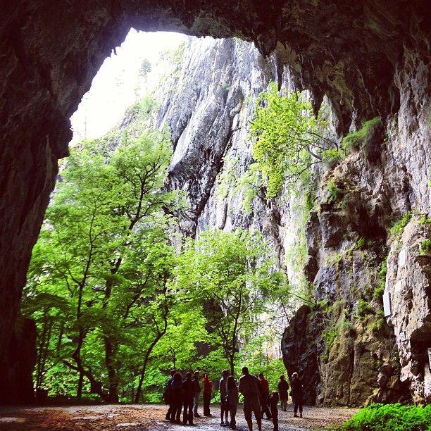 Škocjanske jame in Divača, Občina Divača