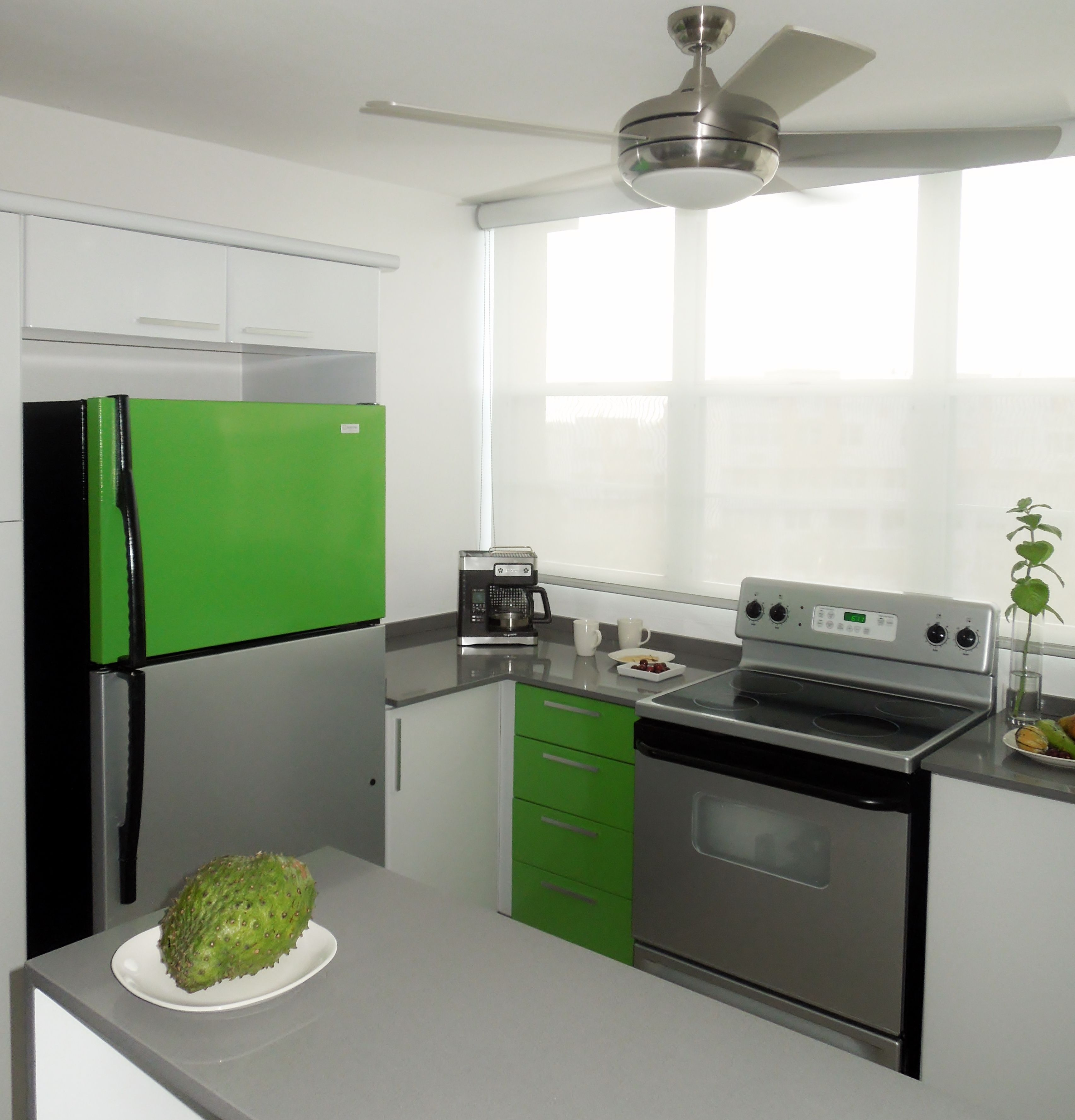 Color in the Kitchen! A low budget solution for refrigerator resurfacing.