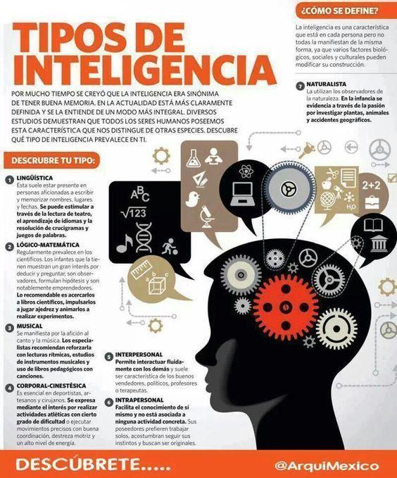Tipos De Inteligencia Definición Y Características Infografía Neurociencia Y Educacion Psicologia Y Psiquiatria Psicologia