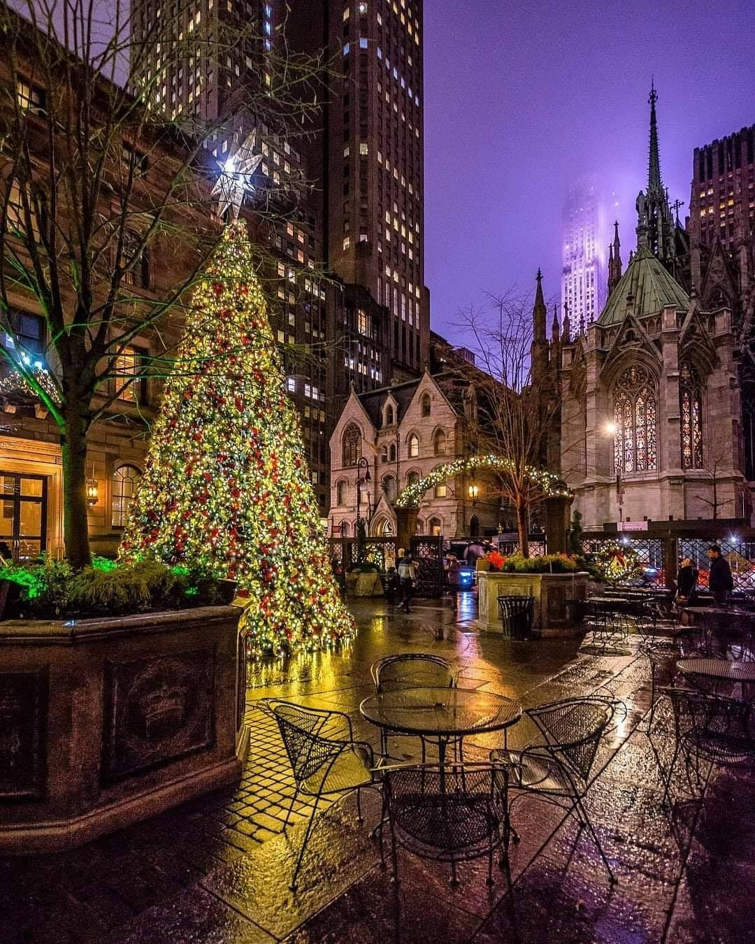 Christmas Ny 2019.Pin By Steve Arriaga On Nyc In 2019 New York New York