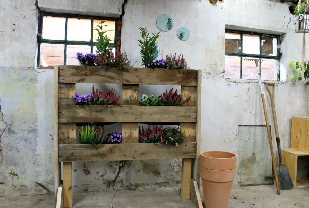 In het najaar kan je balkon of terras wel een oppepper gebruiken froukje en miranda gaan daarom - Deco kleine tuin buiten ...