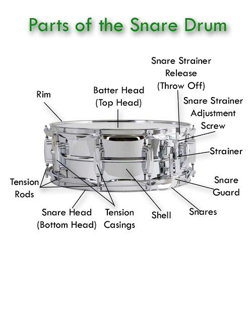 snare drum parts diagram picture pictures wire data u2022 rh asertick co snare drum stand parts diagram Snare Drum Head