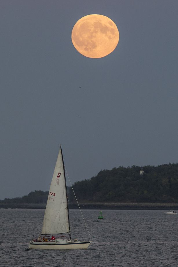 BOSTON, MA - SEPTEMBER 27: The Super Blood Moon rises over a sailboat in Boston Harbor on September 27, 2015 in Boston, Massachusetts. The Super Moon coincides with a total lunar eclipse, a rare combination that last occured in 1982. (Photo by Scott Eisen/Getty Images)