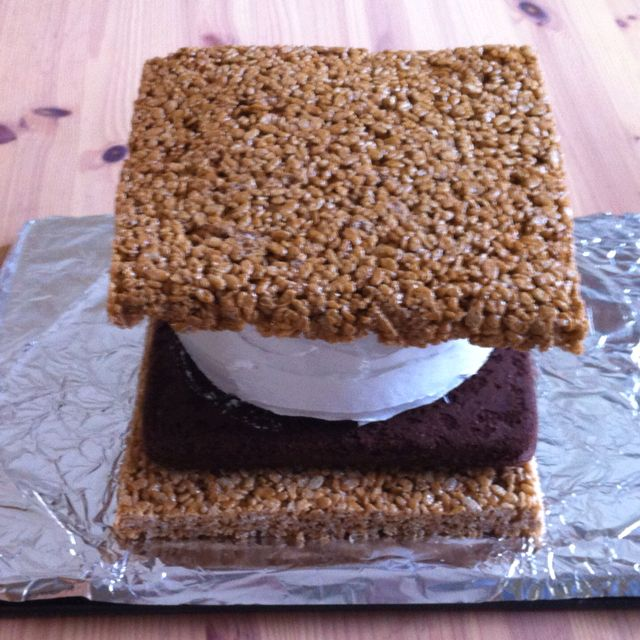 S'More Cake made for a 5 year olds camping themed birthday party. Bottom and top are rice Krispy treats, then brownies, then a white cake with marshmallow frosting. It tastes as good as it looks! My sister made this, so I can't take credit.
