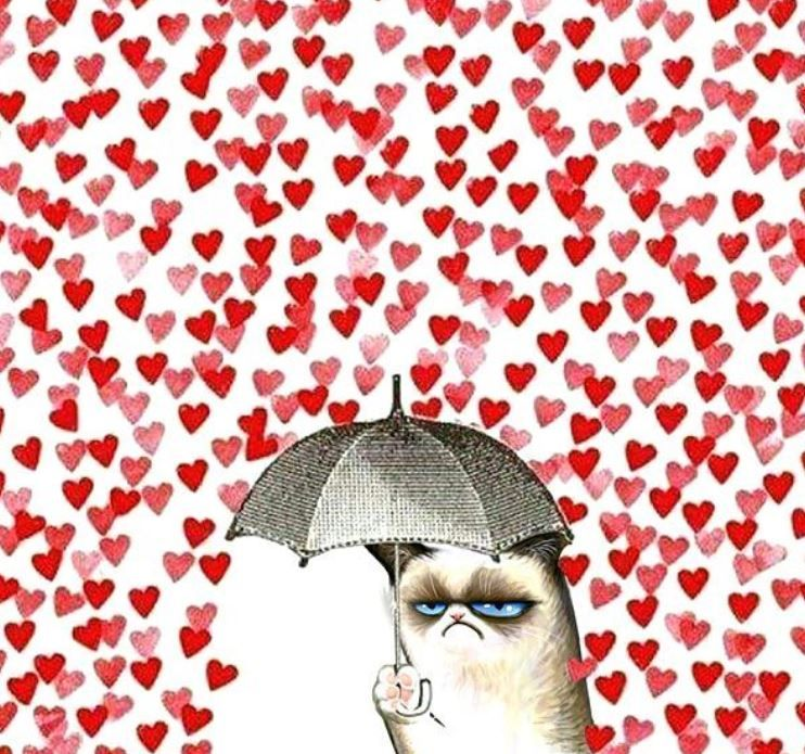 Anti valentinstag spruche fur singles