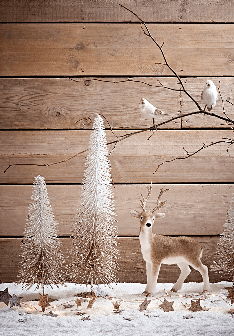 Get the Look   Midwinter Woodland