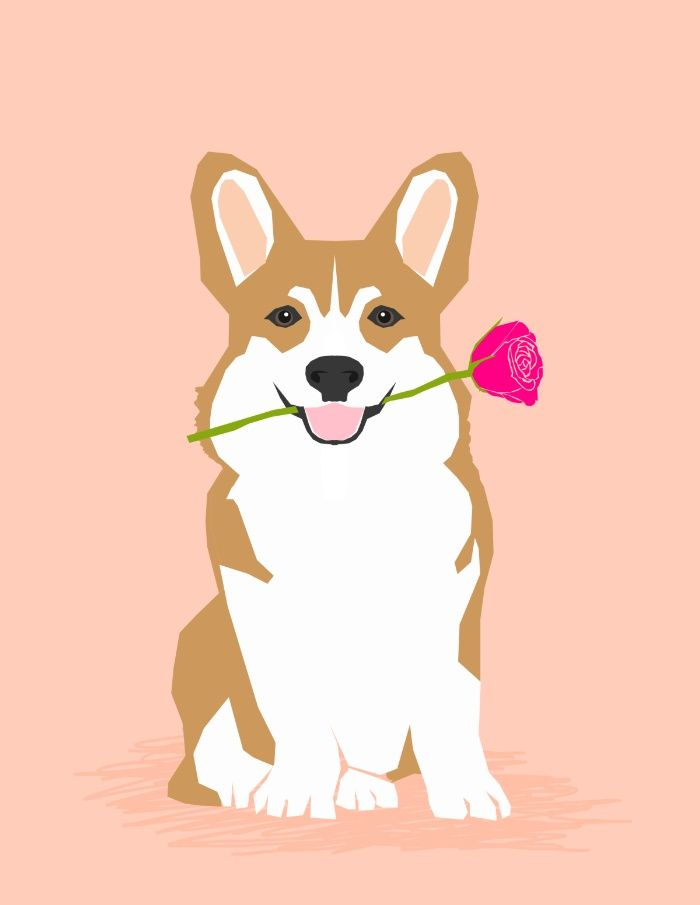 Valentines Corgi With Rose Love Cute Corgi For Corgi Owners Trendy Girls Love Valentines Day Art Print By Petfri Corgi Drawing Corgi Art Corgi Wallpaper