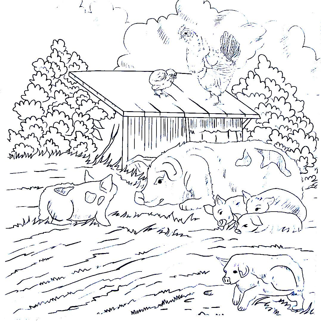 Pig with baby piggies on the farm - Country living coloring book ...