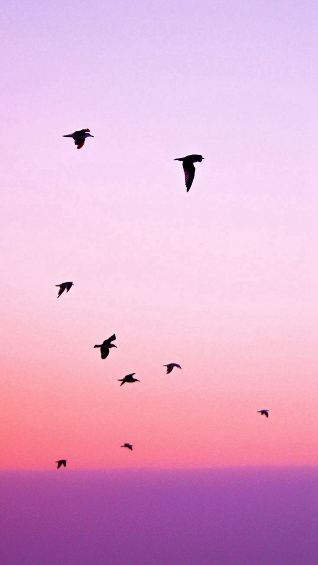 Birds Flying In Purple Sunset IPhone 6 Wallpaper