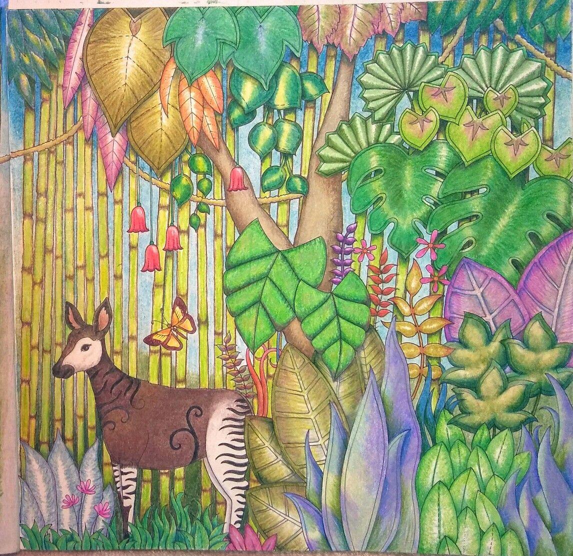 pin by alexandria 0543 on mj wild jungle i chameleon okapi