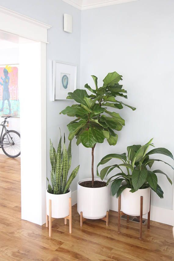 Large Mid Century Modern Planter Plant Stand Planter Pot With Wood Stand 12 Ceramic Pot Planter Stand In 2020 Wohnzimmer Pflanzen Wohnzimmerpflanzen Minimalistische Wohnung