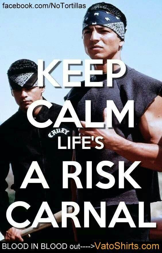 Life's A Risk Carnal (With images) Outing quotes