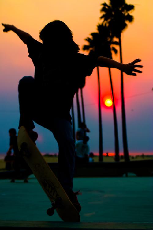 Skateboarder At Sunset Skateboard Photography Tree Silhouette Sunset Skateboard
