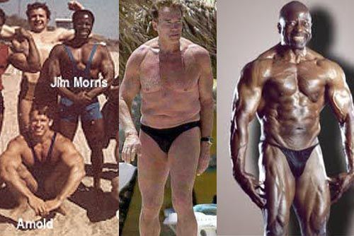 Why Men shouldn't be Vegetarians! - Bodybuilding com Forums