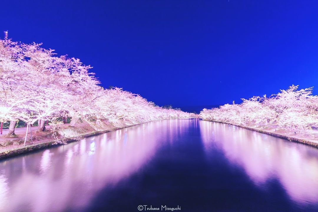 Hirosaki Aomori Nature Photography Hirosaki Nature Conservation