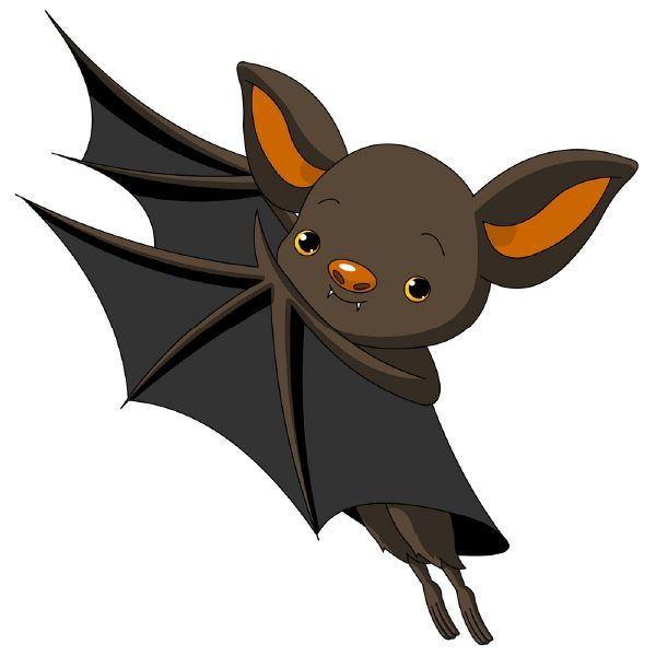 image result for cave bats clipart halloween and autumn rh pinterest com cute bat outline clipart