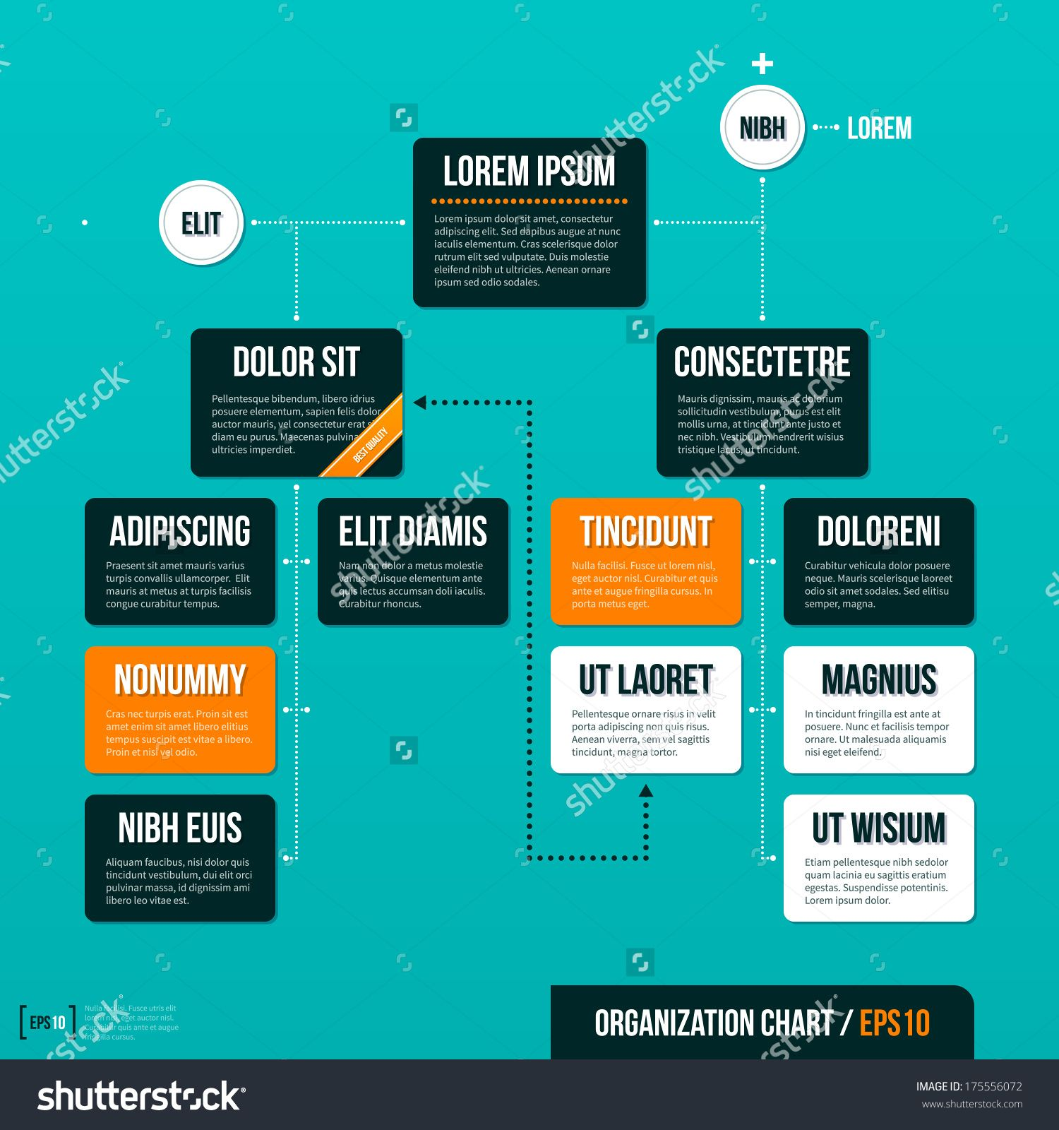 Modern organizational chart template on turquoise background. EPS10 ...