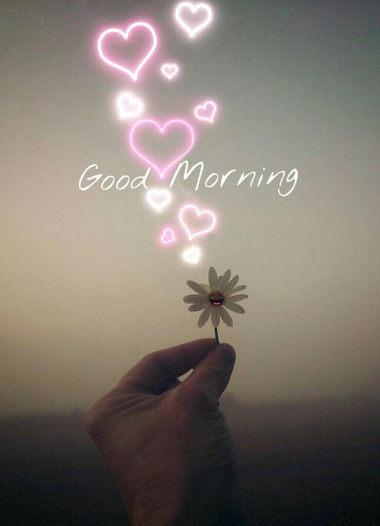 Saraseraragmail. com.. Buongiorno!