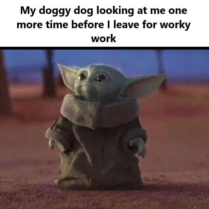 So I Saw One Saying Me Looking At My Doggy Dog But I Felt This Would Have Been Better R Babyyoda Baby Yoda Grogu Yoda Funny Yoda Meme Funny Relatable Memes