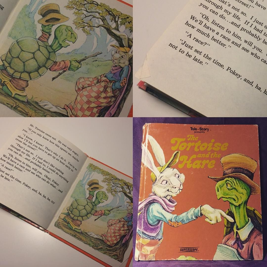 1981 The Tortoise And The Hare Story Book In Vintage Condition