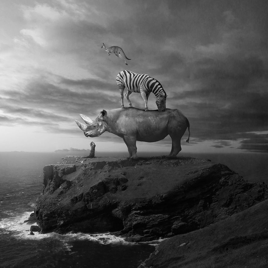 Surreal portraits of animals traveling the world