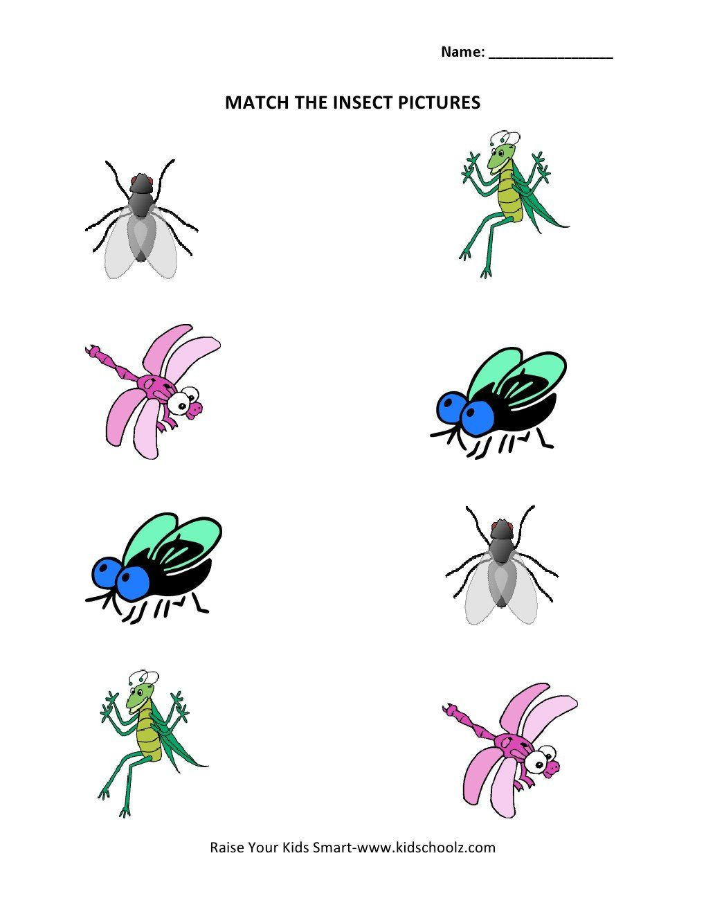 Insects Worksheets For Kindergarten Insect Worksheets For Kindergarten Bugs And Insects Theme In 2020 Insects Theme Kindergarten Bugs Kindergarten Worksheets