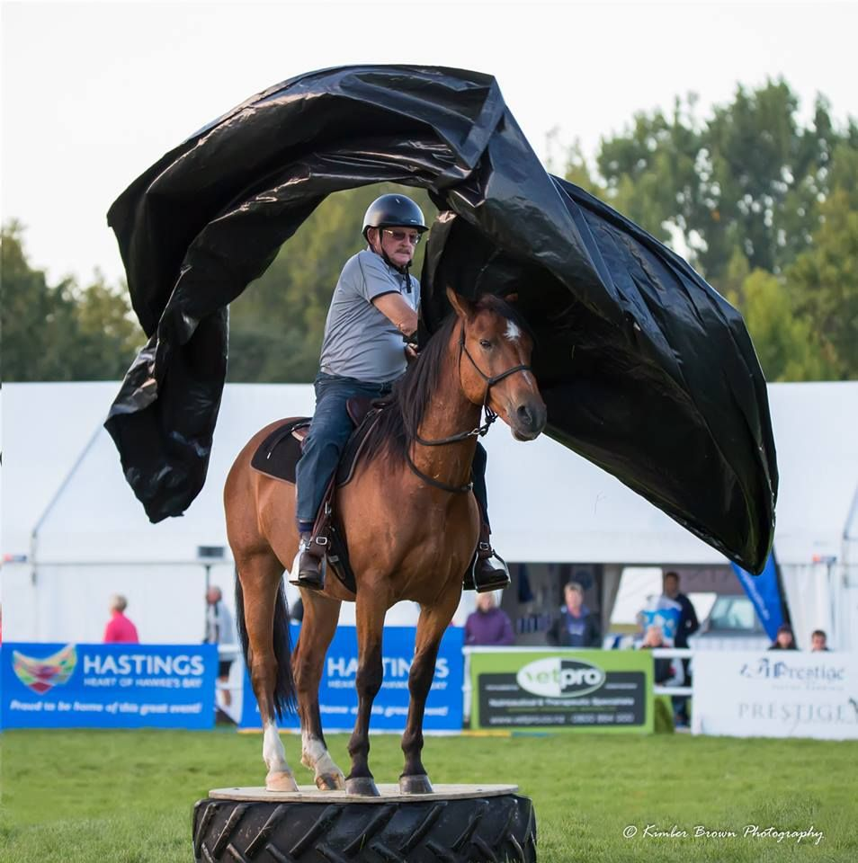 Paddy Mair and Kachina competing at Horse of the Year (Kaimanawa Stallion Makeover Challenge)