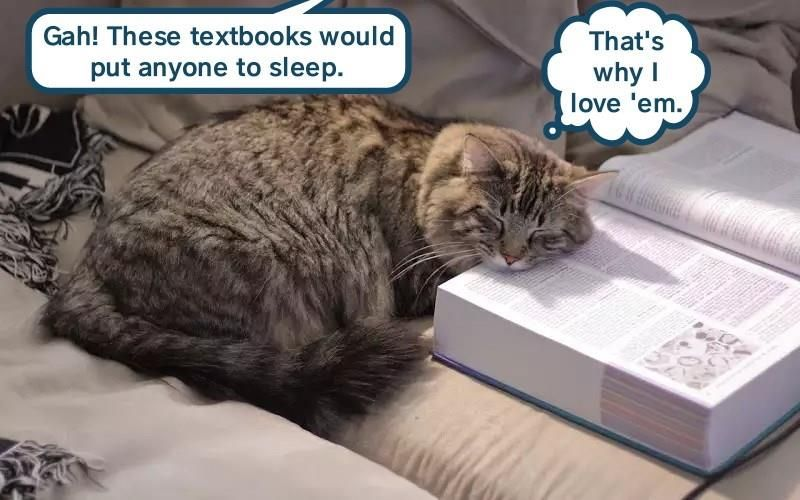 A Textbook Case Cat Books Cats Cat Owner Problems