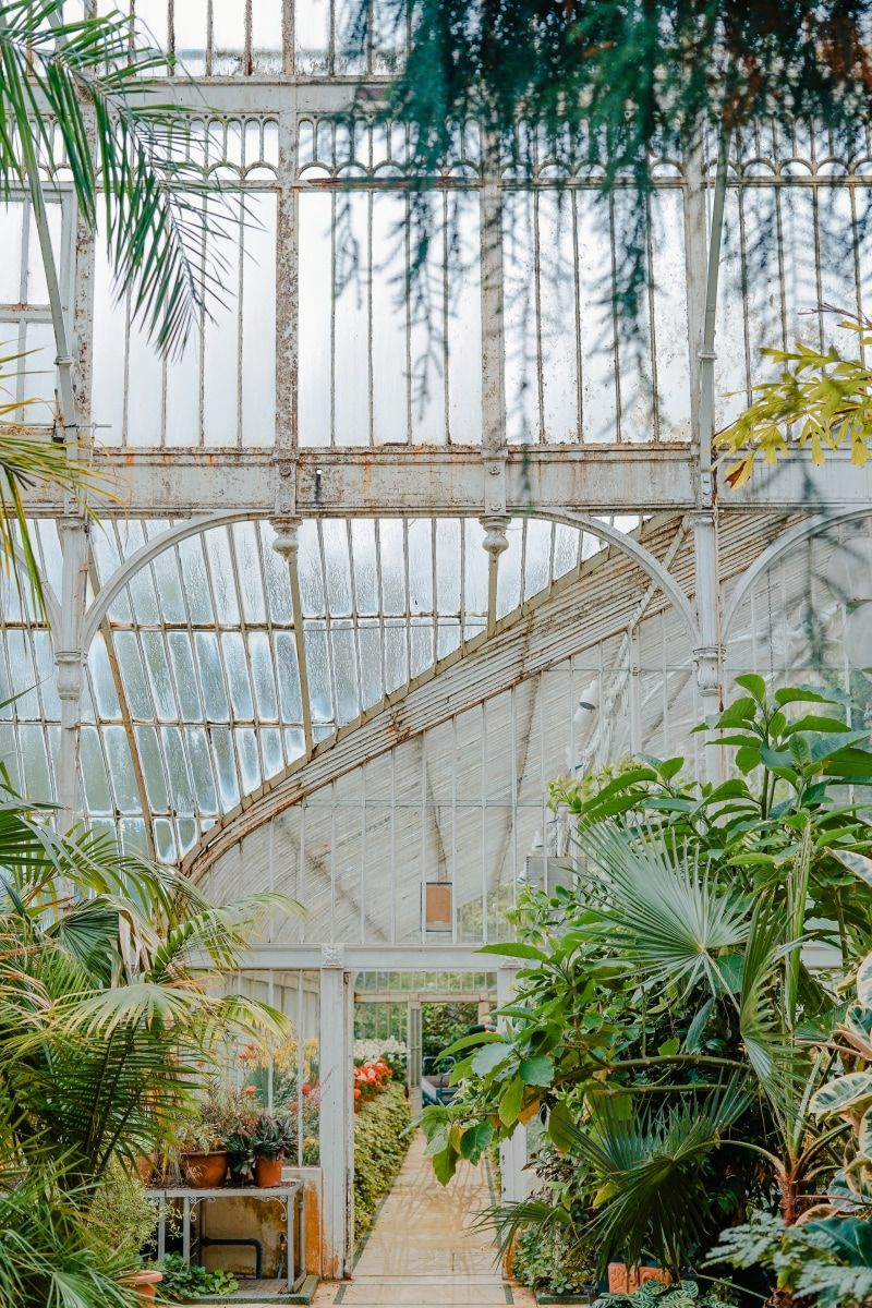 8 Types Of People Who Need Greenhouse Inspiration Kew Gardens White Garden Fence Greenhouse Pictures