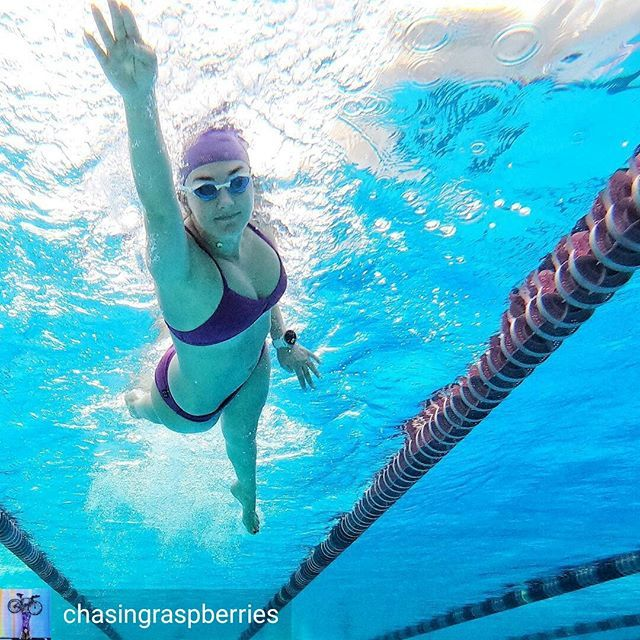 be8c4251410b1 Credit to @chasingraspberries : Returning to the pool this morning for a  short but sweet