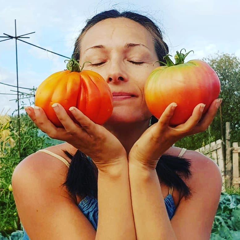 Tomate Corazón De Buey Y Tomate Primizia De Las Variedades Que Más Me Gustan Huertoorganico Huerta Huertobio Agriculturareg Pumpkin Tomato Vegetables