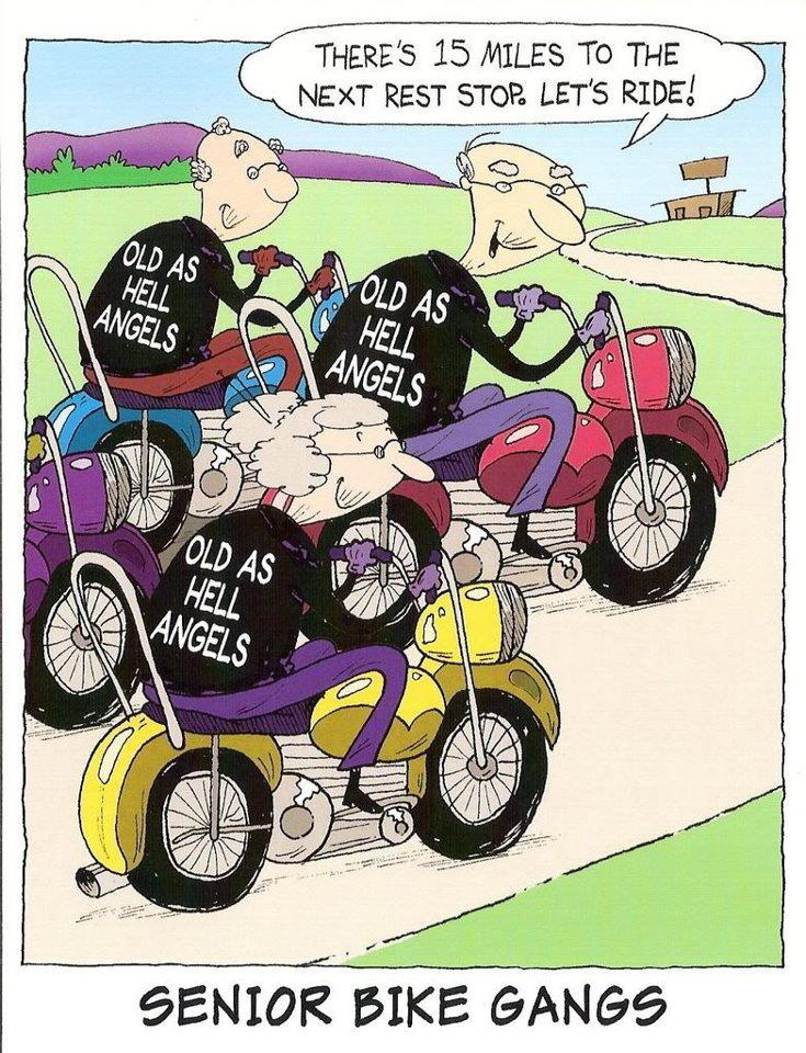 Our HD Senior Biker Guys