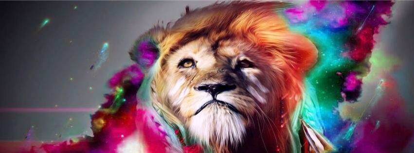 León Colores Drugs Arte Arte Abstracto Portadas