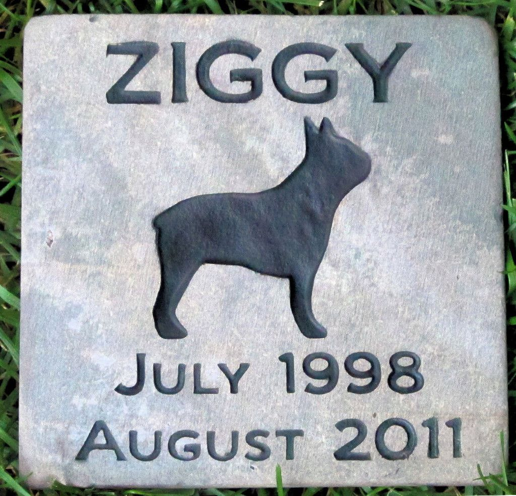 personalized pet dog memorial gravestone boston terrier u0026 other