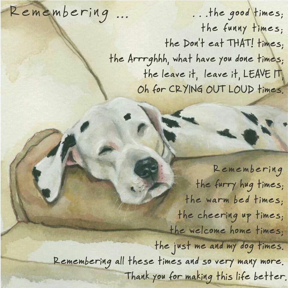Memories Dog Quotes Dog Poems Pet Remembrance