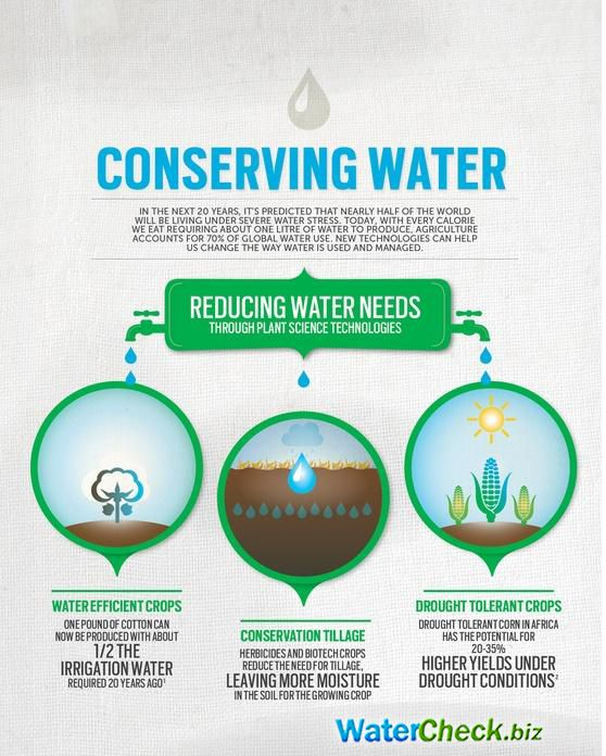 Conserve Water Water Conservation Infographic Health Green Energy