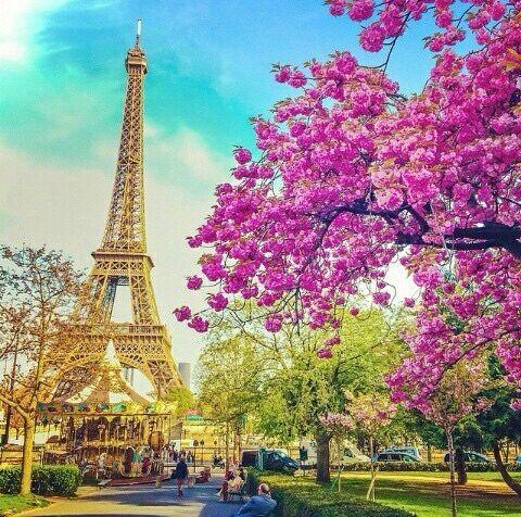 ⊱ɛʂɬཞɛƖƖą⊰ | Картинки парижа, Париж, Эйфелева башня
