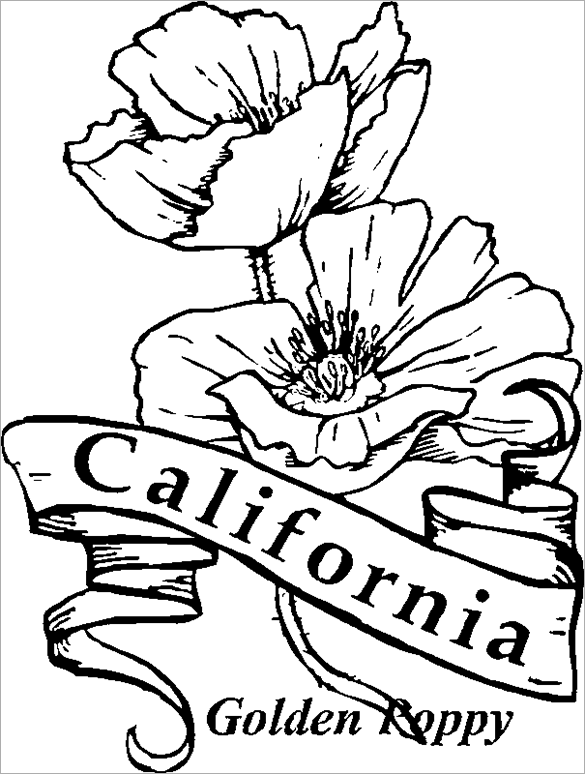 Poppies Coloring Pages Best Coloring Pages For Kids Poppy Coloring Page Flag Coloring Pages Printable Flower Coloring Pages