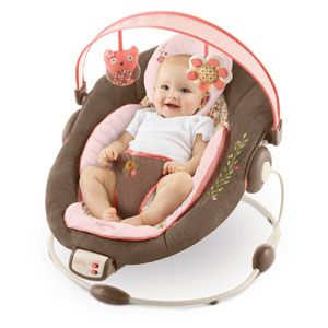 Bouncer Shown In Cinnabloom Available At Babies R Us