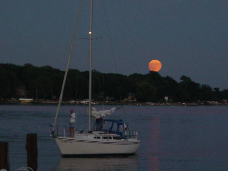 Hp photos holland michigan boat rental pontoon boat