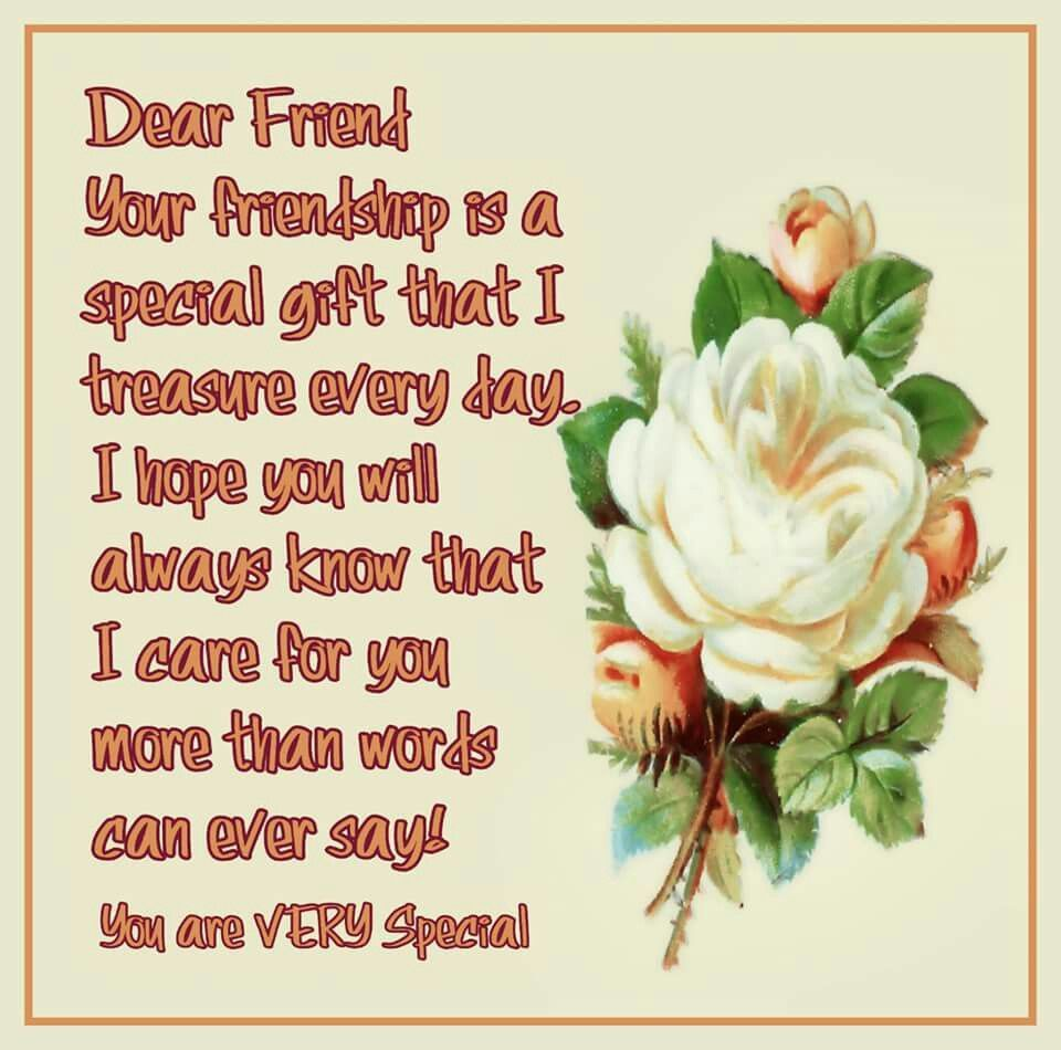 Dear Friend Your Friendship Is A Special Gift That I Treasure Every Day Quotes Quote