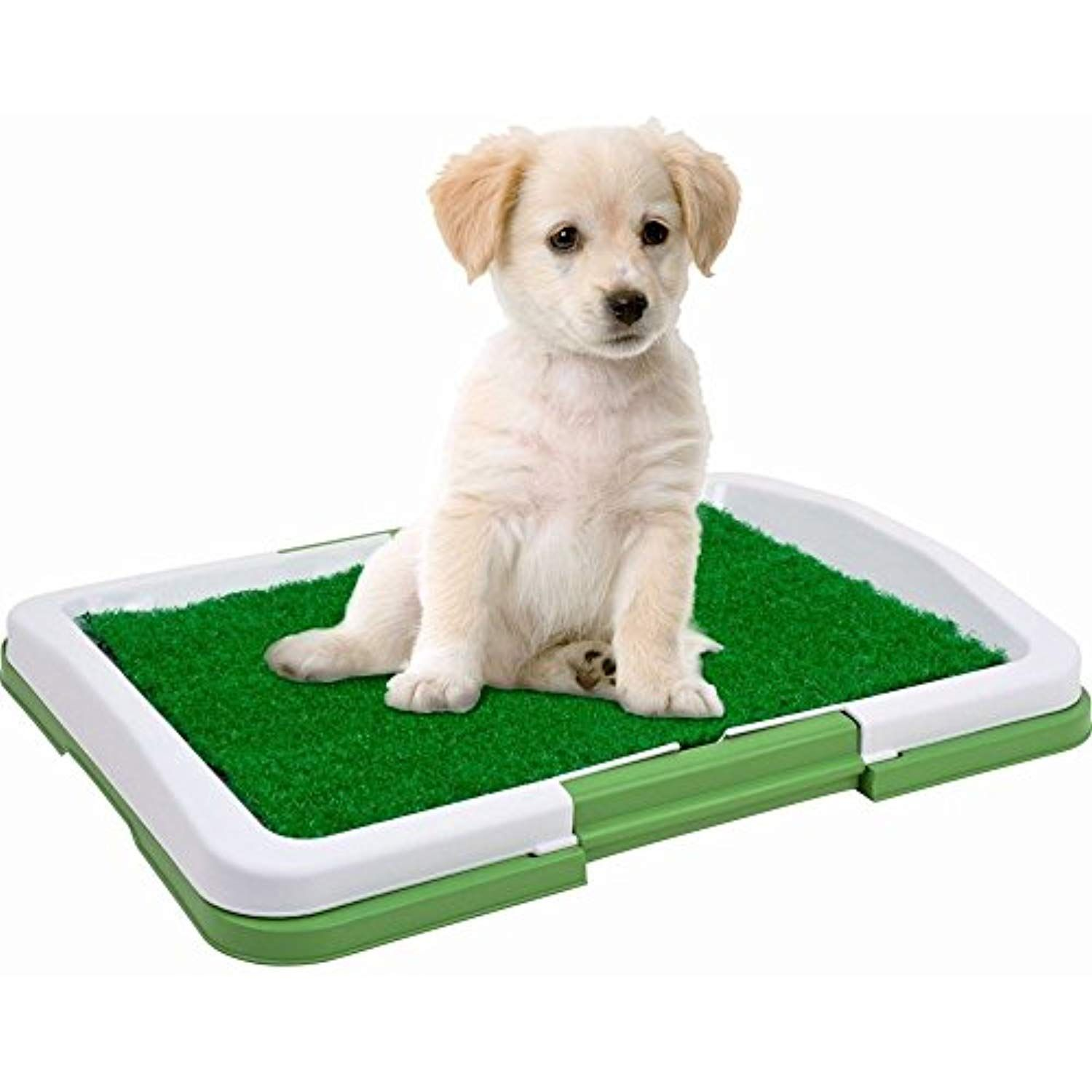 Be Good Pet Training Pad With Real Grass Puppy Pads Puppy Potty