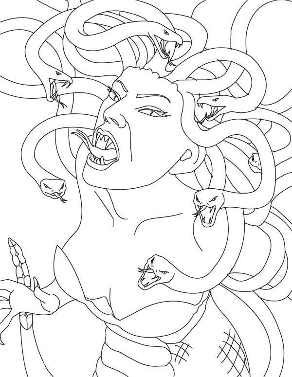 Pin On Medusa